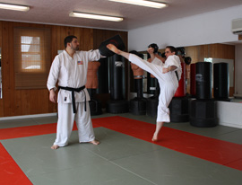 Adult Martial Arts Classes